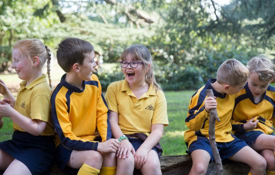 Children laughing on log